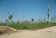 riego-de-la-urbanizacion-el-soto